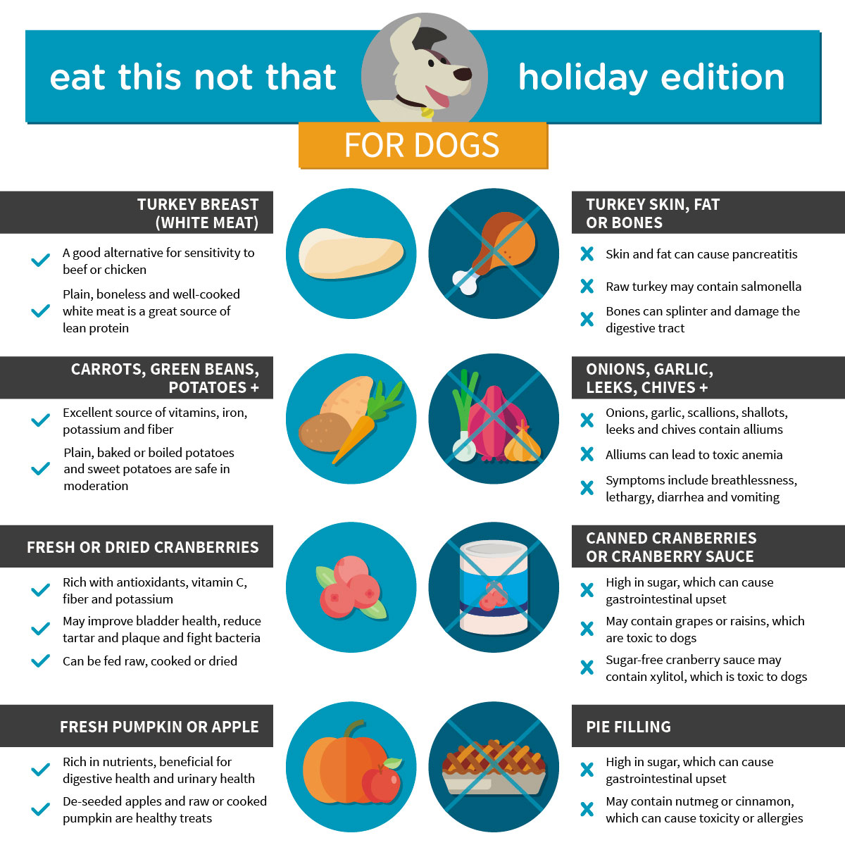 """Eat This, Not That"" For Dogs And Cats: Holiday Edition"